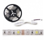 TIRA LED 5M RGB + BLANCO  360LEDS  SMD5050 EXTERIOR