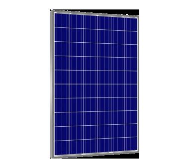 Panel solar Amerisolar 265W/24