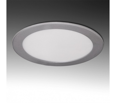 LEDS CIRCULAR ECOLINE 20W 240mm COLOR PLATA